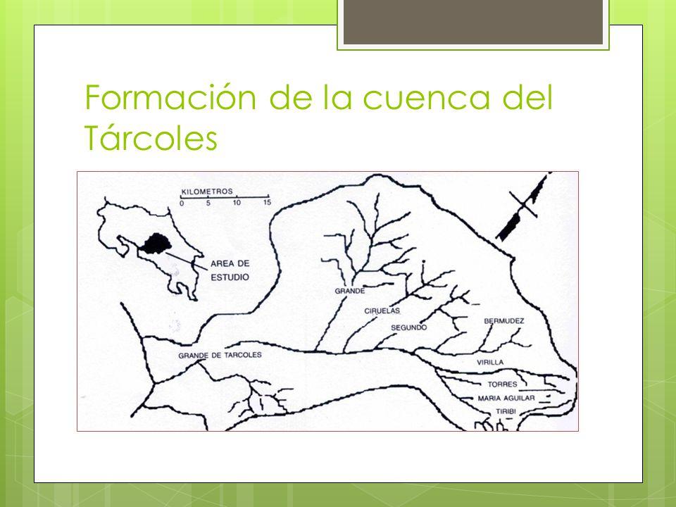 Formación de la cuenca del Tárcoles