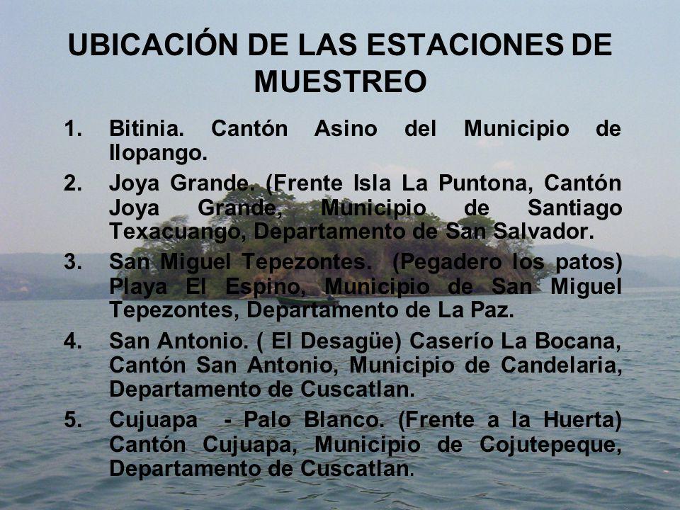 UBICACIÓN DE LAS ESTACIONES DE MUESTREO 1.Bitinia.