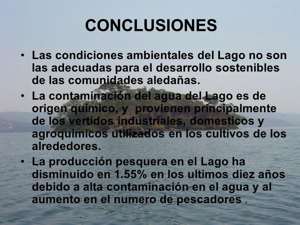 CONCLUSIONES Las condiciones ambientales del Lago no son las adecuadas para el desarrollo sostenibles de las comunidades aledañas.