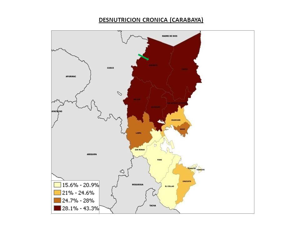 DESNUTRICION CRONICA (CARABAYA)