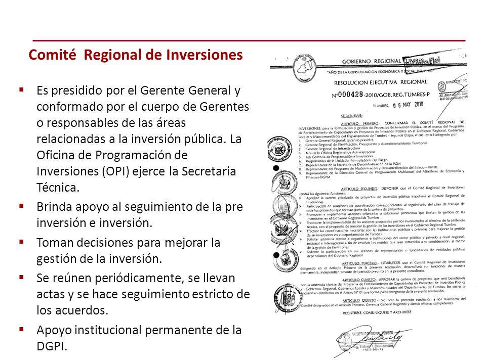  Es presidido por el Gerente General y conformado por el cuerpo de Gerentes o responsables de las áreas relacionadas a la inversión pública.