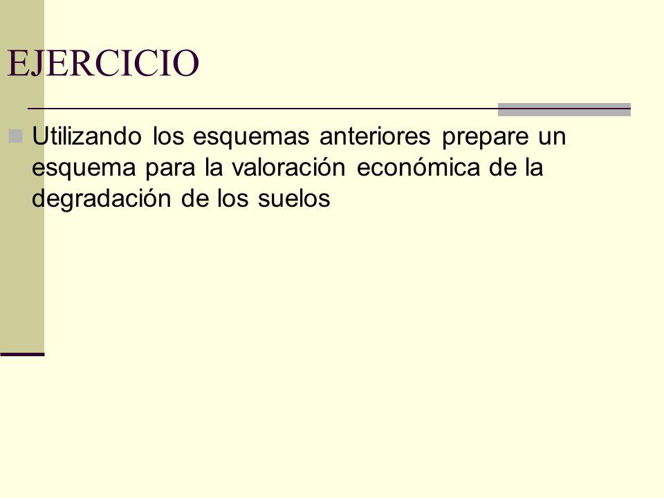 EJERCICIO Utilizando los esquemas anteriores prepare un esquema para la valoración económica de la degradación de los suelos