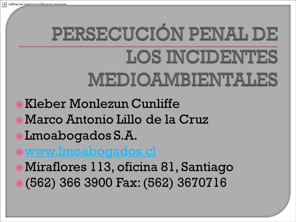  Kleber Monlezun Cunliffe  Marco Antonio Lillo de la Cruz  Lmoabogados S.A.