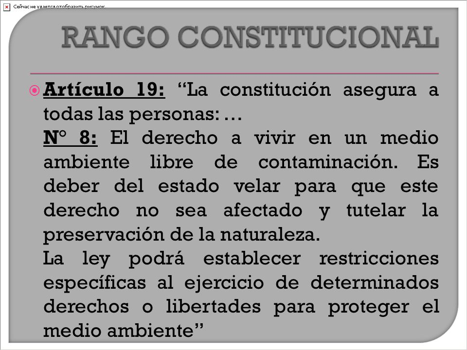  Artículo 19: La constitución asegura a todas las personas: … N° 8: El derecho a vivir en un medio ambiente libre de contaminación.