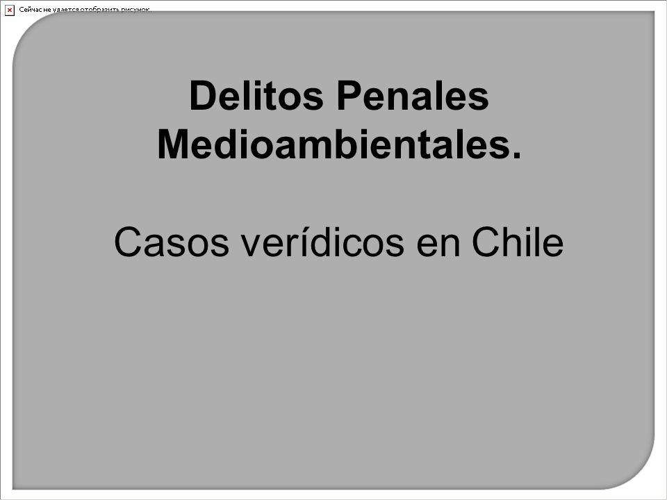 Delitos Penales Medioambientales. Casos verídicos en Chile