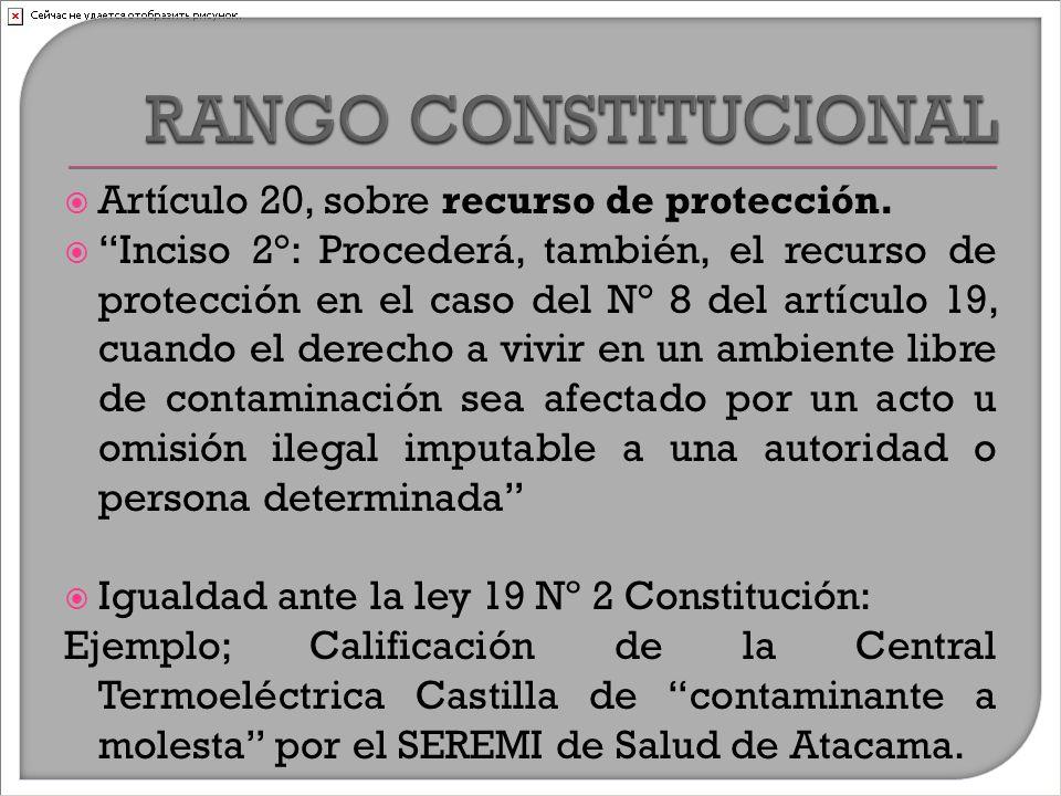  Artículo 20, sobre recurso de protección.