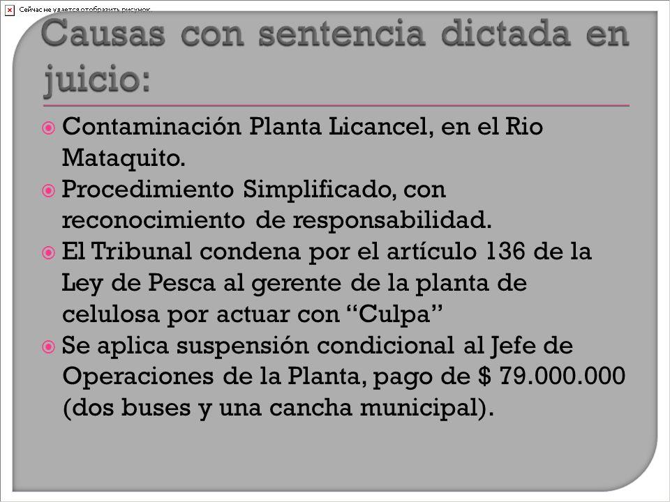  Contaminación Planta Licancel, en el Rio Mataquito.