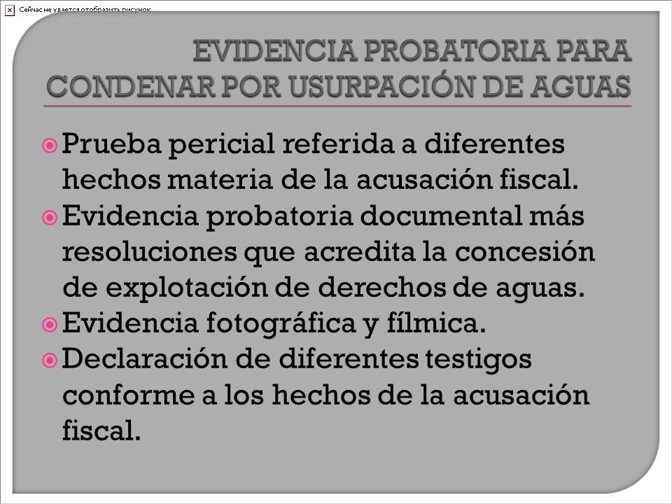  Prueba pericial referida a diferentes hechos materia de la acusación fiscal.