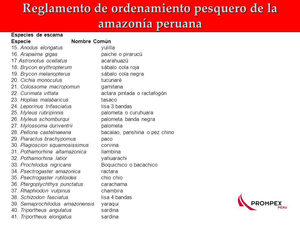 Reglamento de ordenamiento pesquero de la amazonía peruana Especies de escama EspecieNombre Común 15.