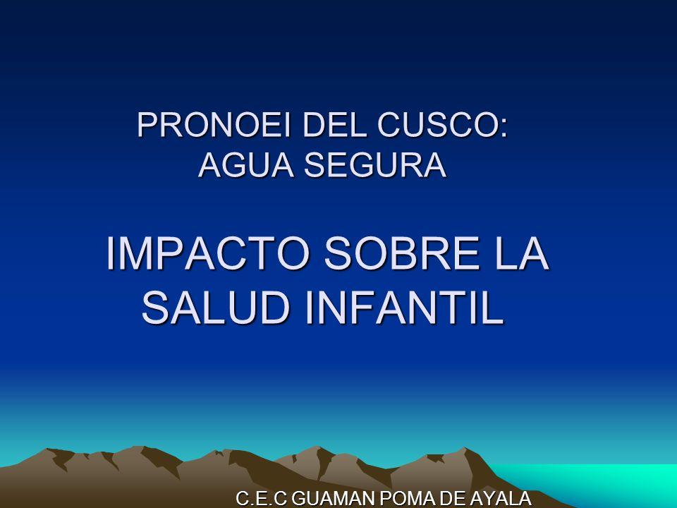 PRONOEI DEL CUSCO: AGUA SEGURA IMPACTO SOBRE LA SALUD INFANTIL C.E.C GUAMAN POMA DE AYALA