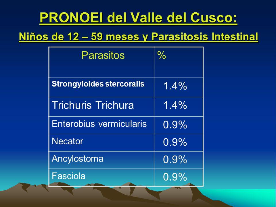 PRONOEI del Valle del Cusco: Niños de 12 – 59 meses y Parasitosis Intestinal Parasitos% Strongyloides stercoralis 1.4% Trichuris Trichura 1.4% Enterobius vermicularis 0.9% Necator 0.9% Ancylostoma 0.9% Fasciola 0.9%