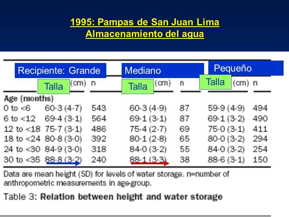 1995: Pampas de San Juan Lima Almacenamiento del agua Recipiente: GrandeMediano Pequeño Talla