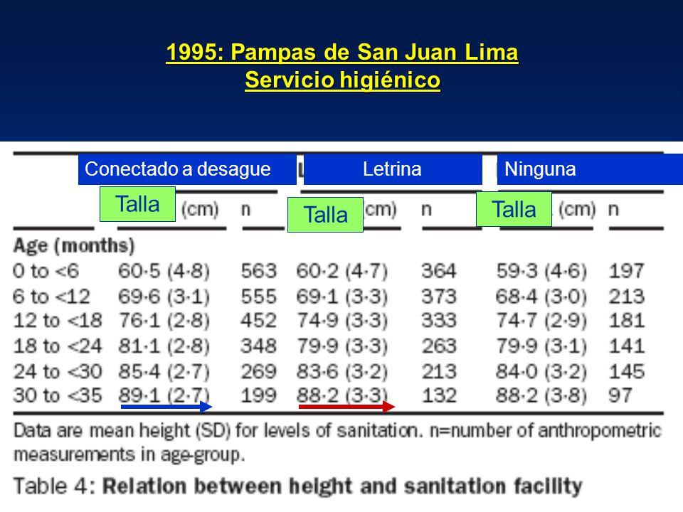 1995: Pampas de San Juan Lima Servicio higiénico Conectado a desagueLetrinaNinguna Talla