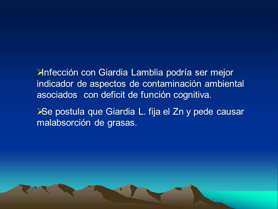  Infección con Giardia Lamblia podría ser mejor indicador de aspectos de contaminación ambiental asociados con deficit de función cognitiva.