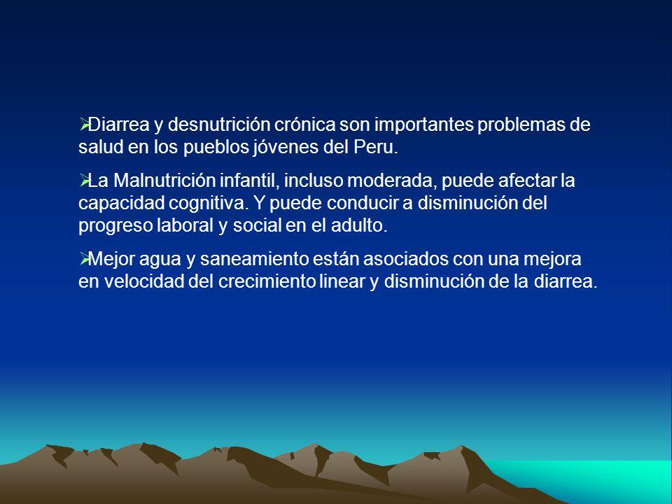  Diarrea y desnutrición crónica son importantes problemas de salud en los pueblos jóvenes del Peru.