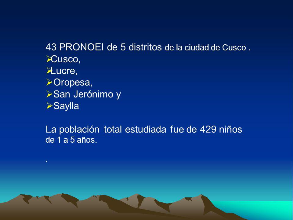 43 PRONOEI de 5 distritos de la ciudad de Cusco.