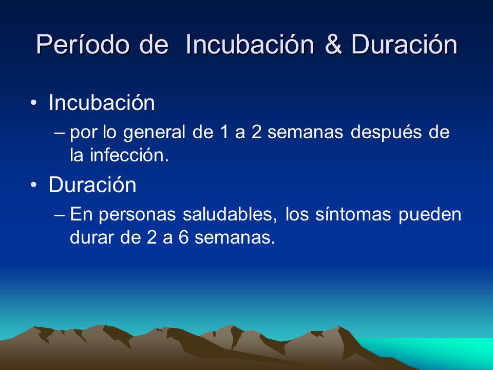 Período de Incubación & Duración Incubación –por lo general de 1 a 2 semanas después de la infección.