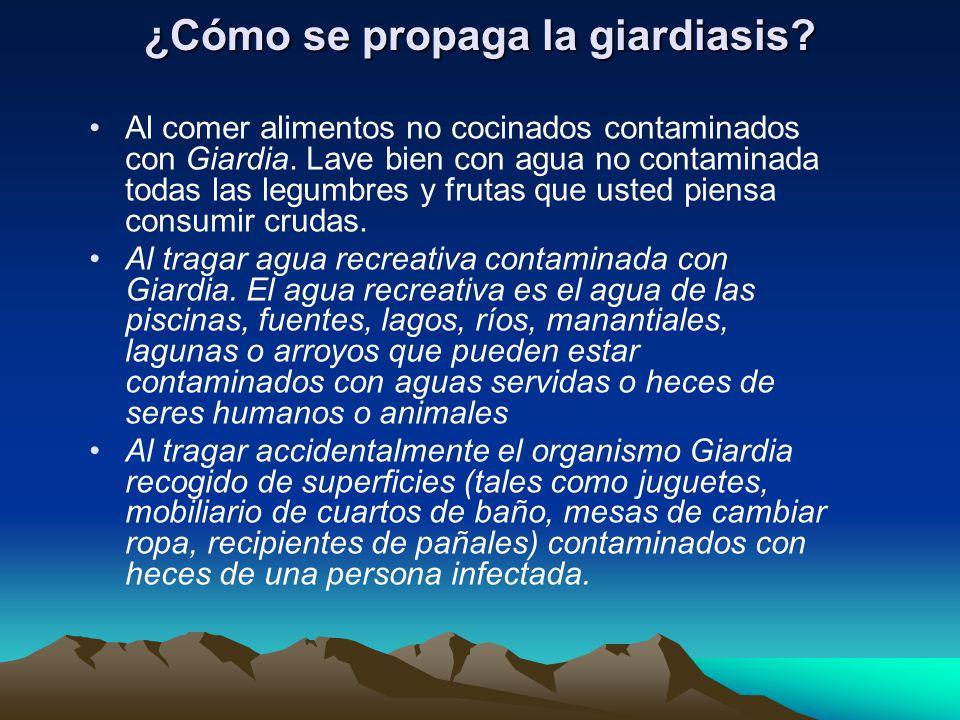 ¿Cómo se propaga la giardiasis. Al comer alimentos no cocinados contaminados con Giardia.