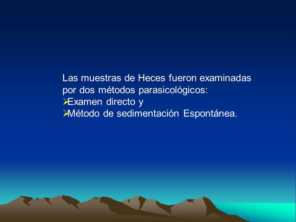 Las muestras de Heces fueron examinadas por dos métodos parasicológicos:  Examen directo y  Método de sedimentación Espontánea.