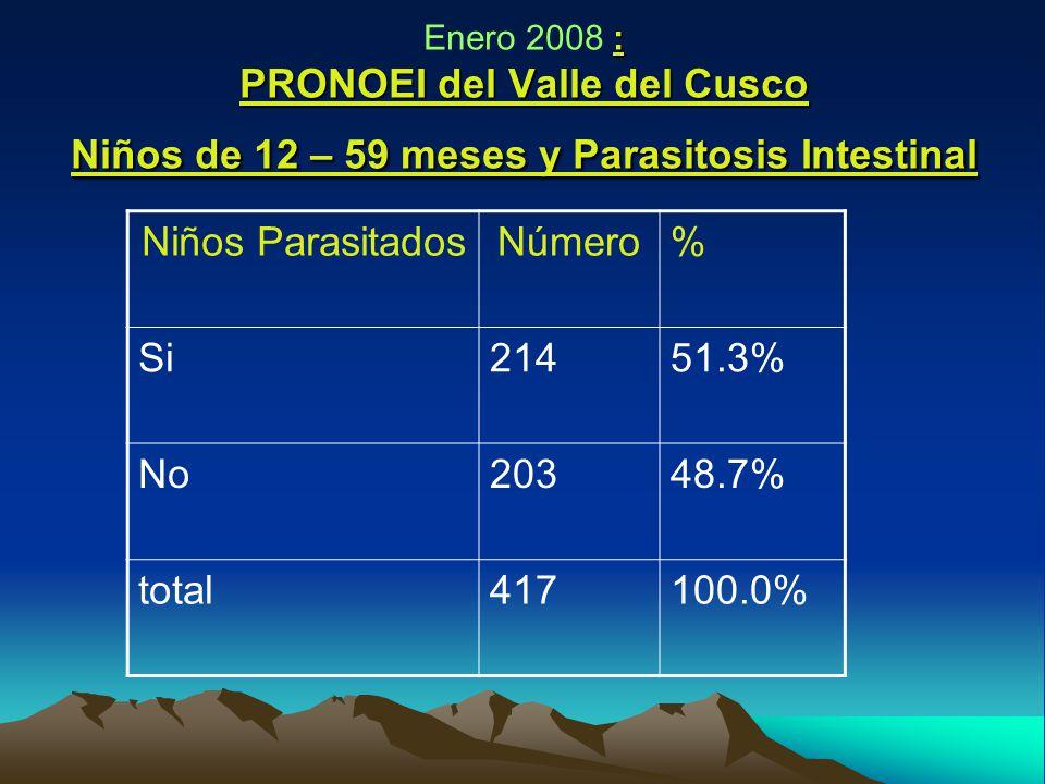 : PRONOEI del Valle del Cusco Niños de 12 – 59 meses y Parasitosis Intestinal Enero 2008 : PRONOEI del Valle del Cusco Niños de 12 – 59 meses y Parasitosis Intestinal Niños ParasitadosNúmero% Si21451.3% No20348.7% total417100.0%
