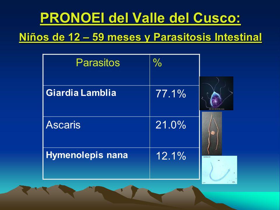 PRONOEI del Valle del Cusco: Niños de 12 – 59 meses y Parasitosis Intestinal Parasitos% Giardia Lamblia 77.1% Ascaris 21.0% Hymenolepis nana 12.1%