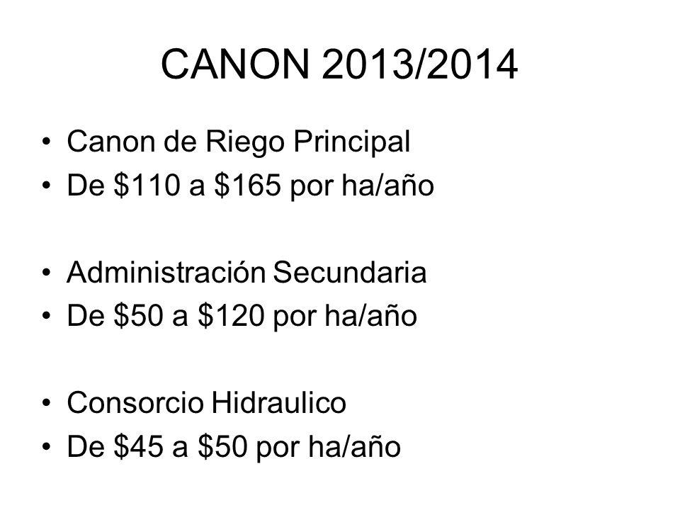 CANON 2013/2014 Canon de Riego Principal De $110 a $165 por ha/año Administración Secundaria De $50 a $120 por ha/año Consorcio Hidraulico De $45 a $50 por ha/año