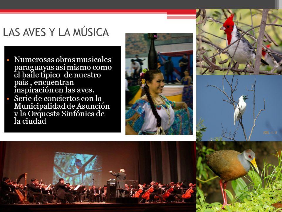 LAS AVES Y LA MÚSICA Numerosas obras musicales paraguayas así mismo como el baile típico de nuestro país, encuentran inspiración en las aves.