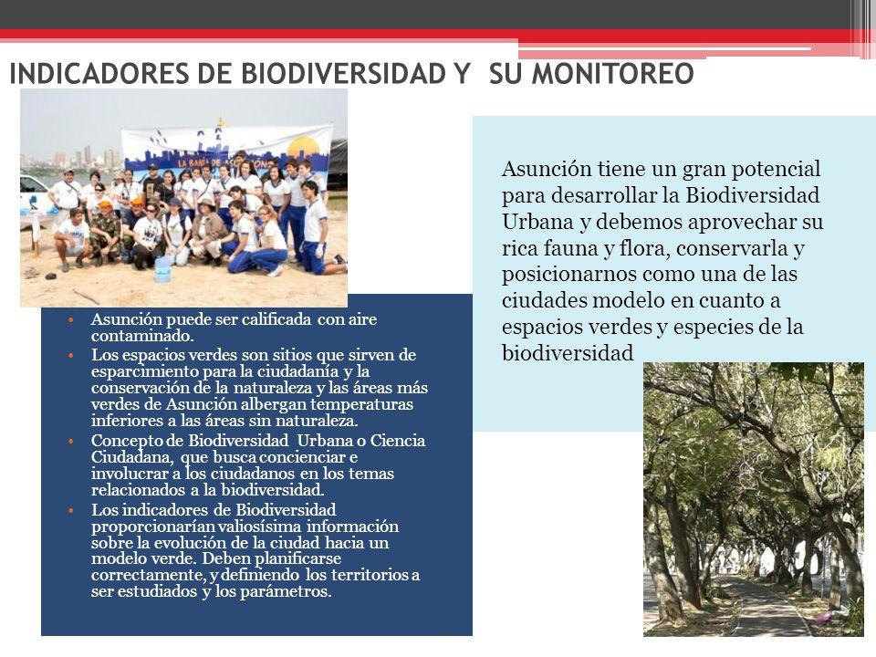 INDICADORES DE BIODIVERSIDAD Y SU MONITOREO Asunción puede ser calificada con aire contaminado.