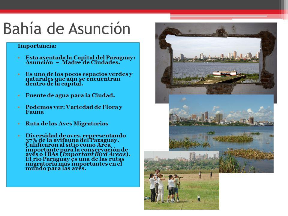 Bahía de Asunción Importancia: Esta asentada la Capital del Paraguay: Asunción – Madre de Ciudades.