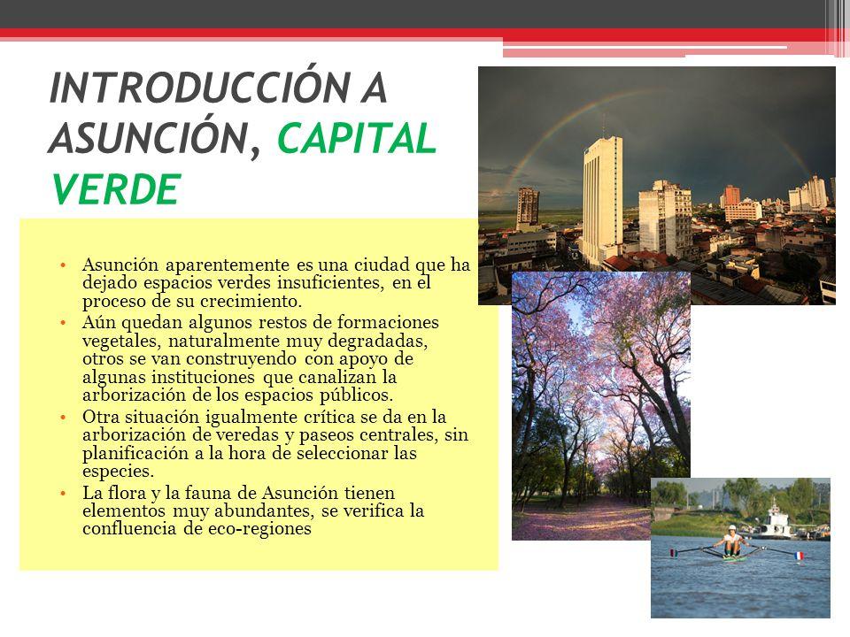 INTRODUCCIÓN A ASUNCIÓN, CAPITAL VERDE Asunción aparentemente es una ciudad que ha dejado espacios verdes insuficientes, en el proceso de su crecimiento.