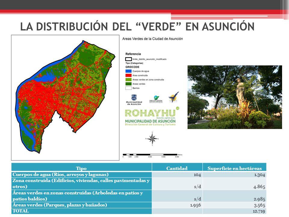 LA DISTRIBUCIÓN DEL VERDE EN ASUNCIÓN TipoCantidadSuperficie en hectáreas Cuerpos de agua (Ríos, arroyos y lagunas)1041.304 Zona construida (Edificios, viviendas, calles pavimentadas y otros)s/d4.865 Áreas verdes en zonas construidas (Arboledas en patios y patios baldíos)s/d2.985 Áreas verdes (Parques, plazas y bañados)1.9563.565 TOTAL 12.719