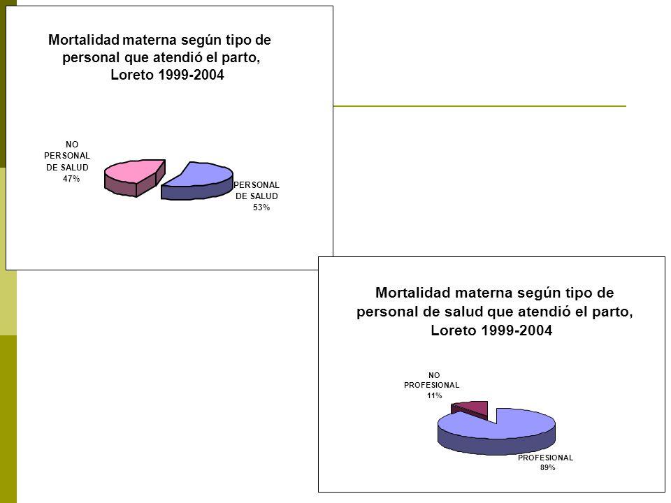Mortalidad materna según tipo de personal que atendió el parto, Loreto 1999-2004 PERSONAL DE SALUD 53% NO PERSONAL DE SALUD 47% Mortalidad materna según tipo de personal de salud que atendió el parto, Loreto 1999-2004 NO PROFESIONAL 11% PROFESIONAL 89%