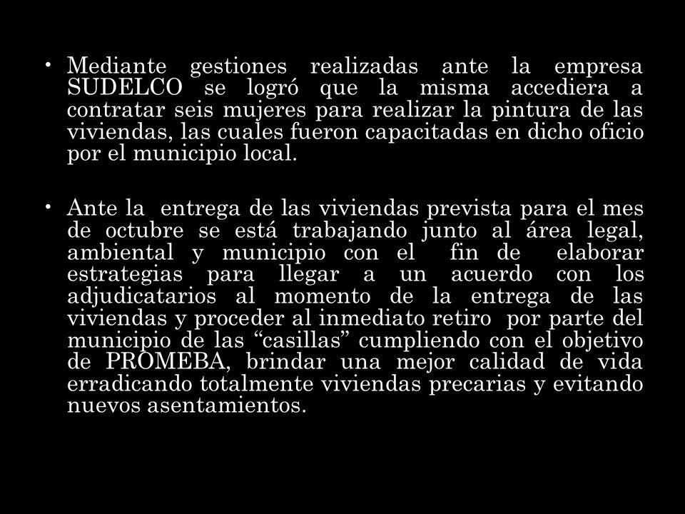 Mediante gestiones realizadas ante la empresa SUDELCO se logró que la misma accediera a contratar seis mujeres para realizar la pintura de las viviendas, las cuales fueron capacitadas en dicho oficio por el municipio local.