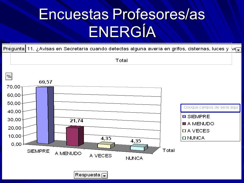 Encuestas Profesores/as ENERGÍA