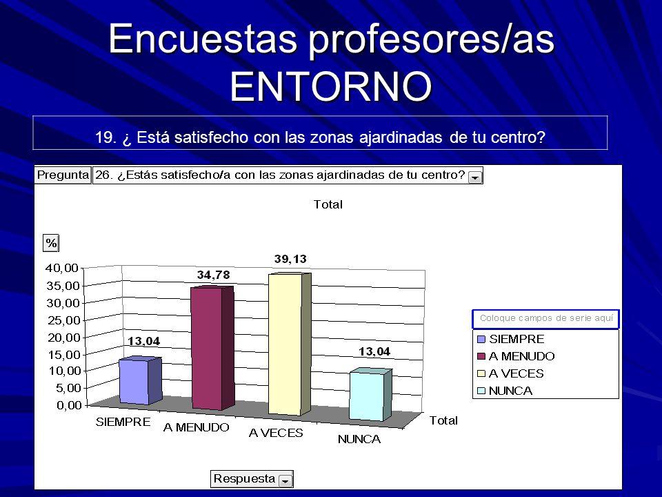 Encuestas profesores/as ENTORNO 19. ¿ Está satisfecho con las zonas ajardinadas de tu centro