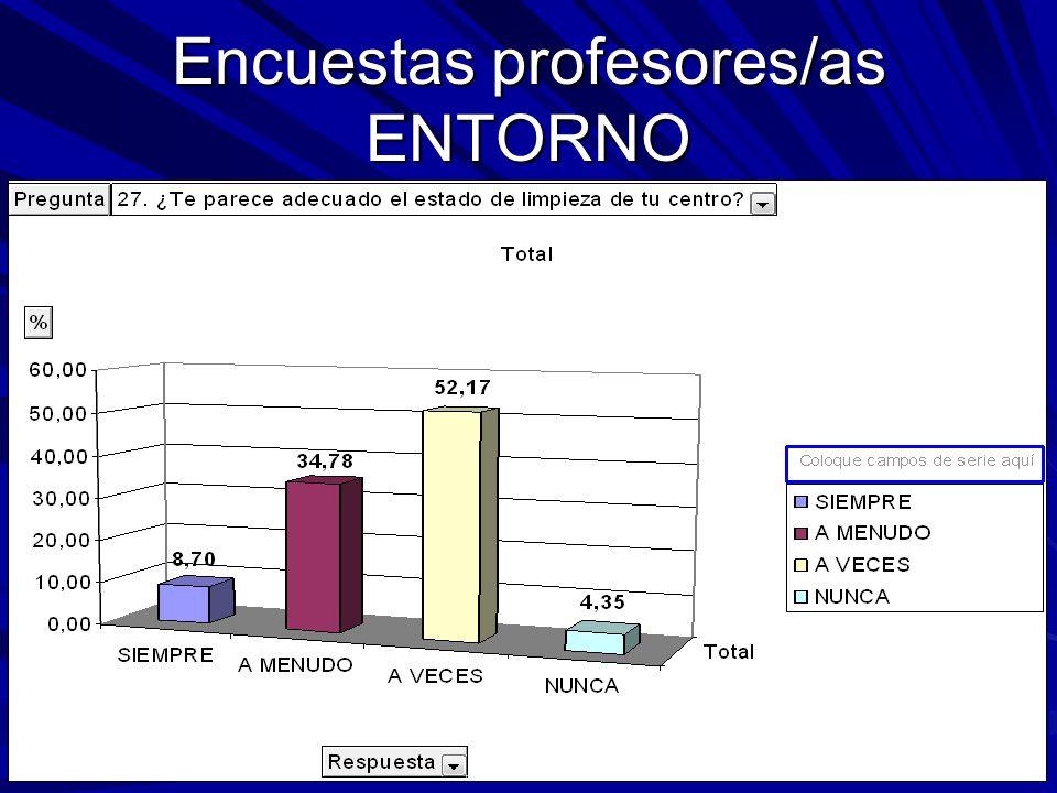 Encuestas profesores/as ENTORNO