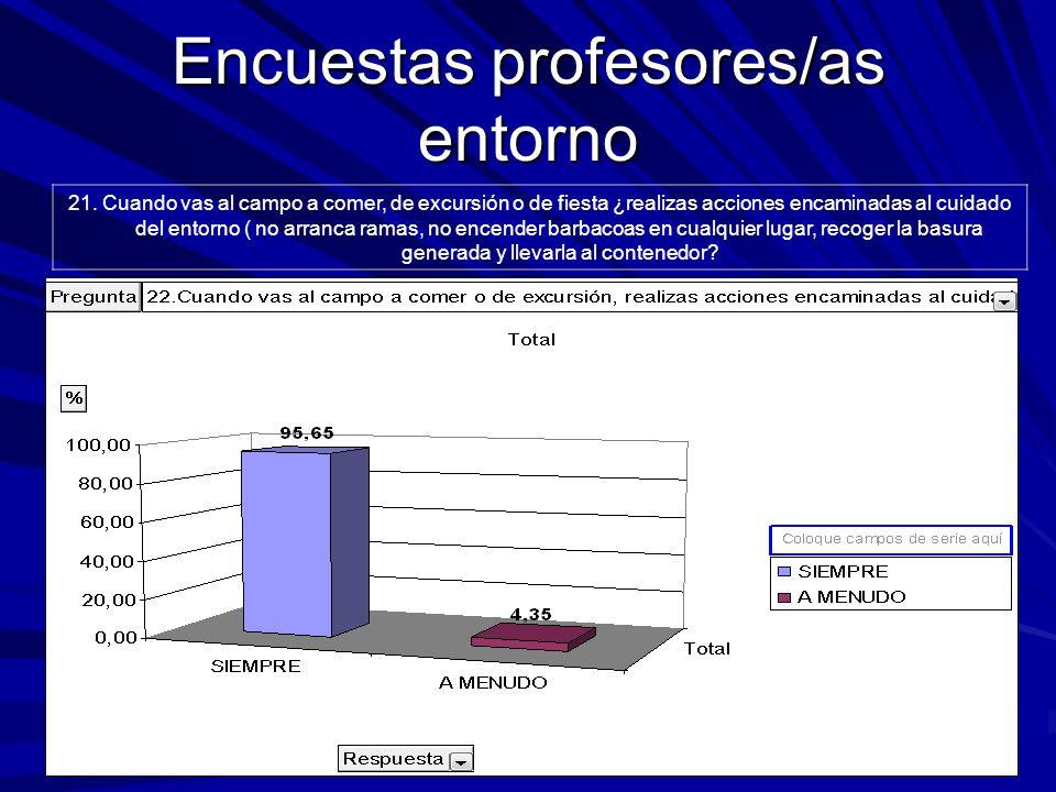 Encuestas profesores/as entorno 21.