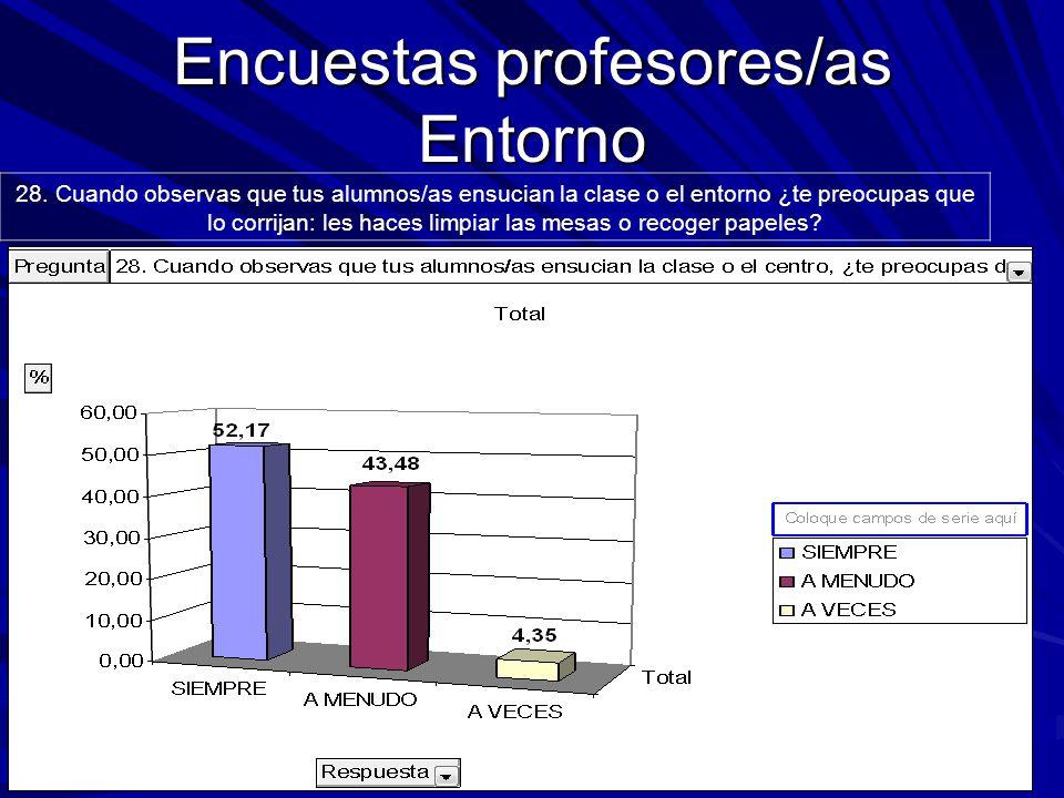 Encuestas profesores/as Entorno 28.