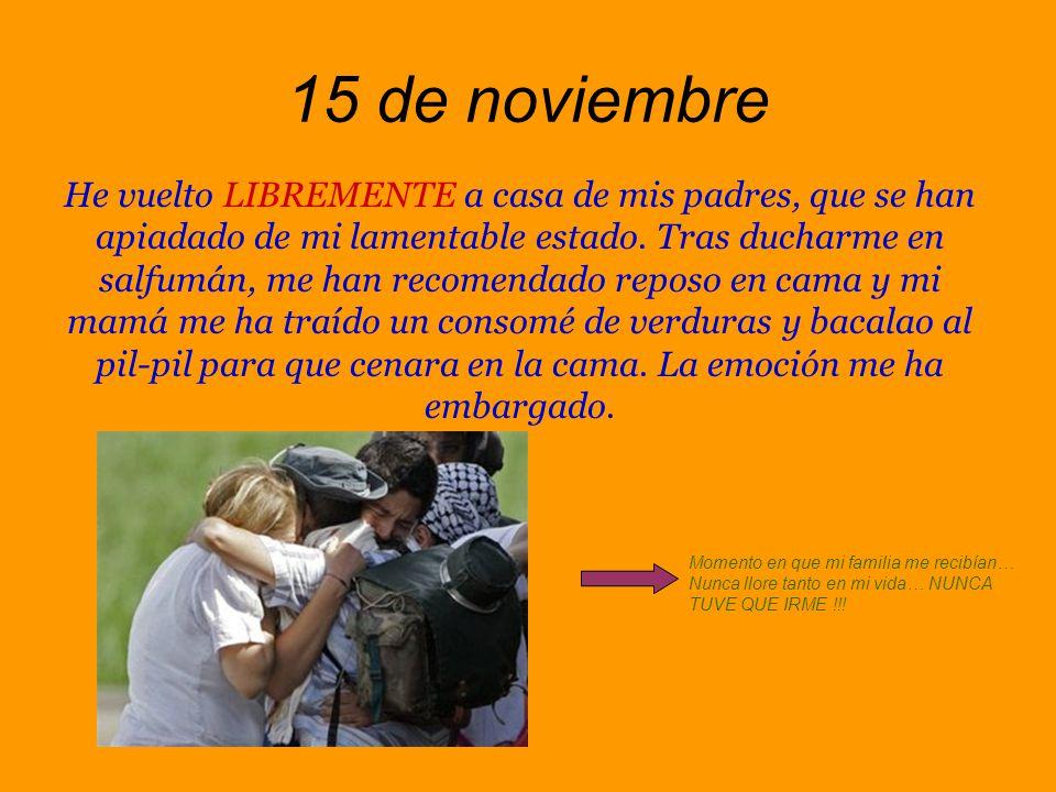 12 de noviembre He encontrado, con gran alegría, mi diario bajo algunos escombros y restos de basura.