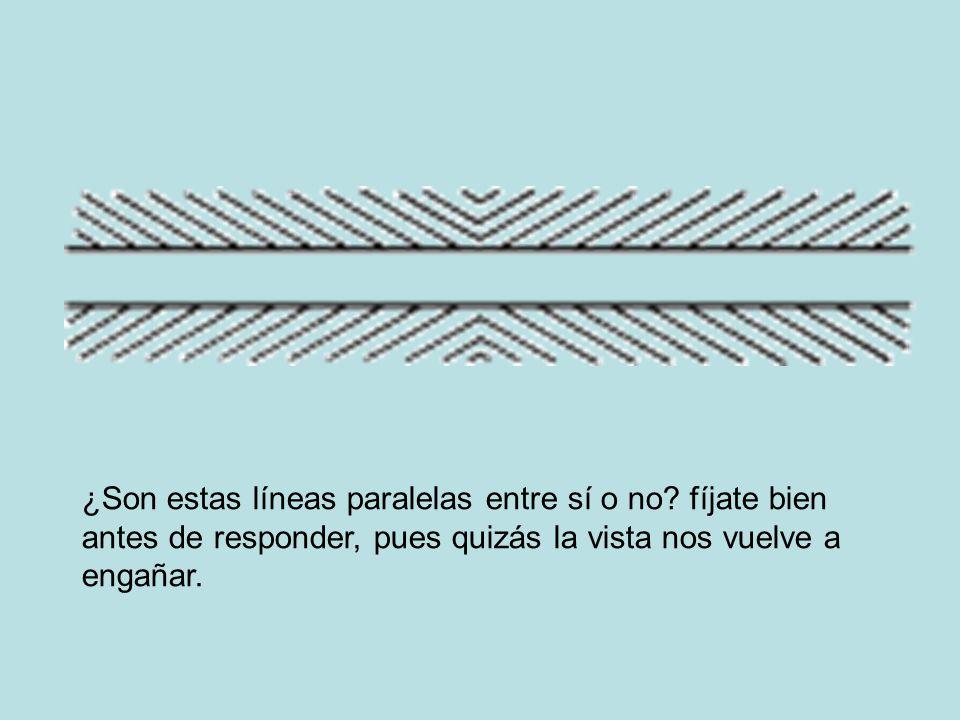 ¿Son estas líneas paralelas entre sí o no? fíjate bien antes de responder, pues quizás la vista nos vuelve a engañar.