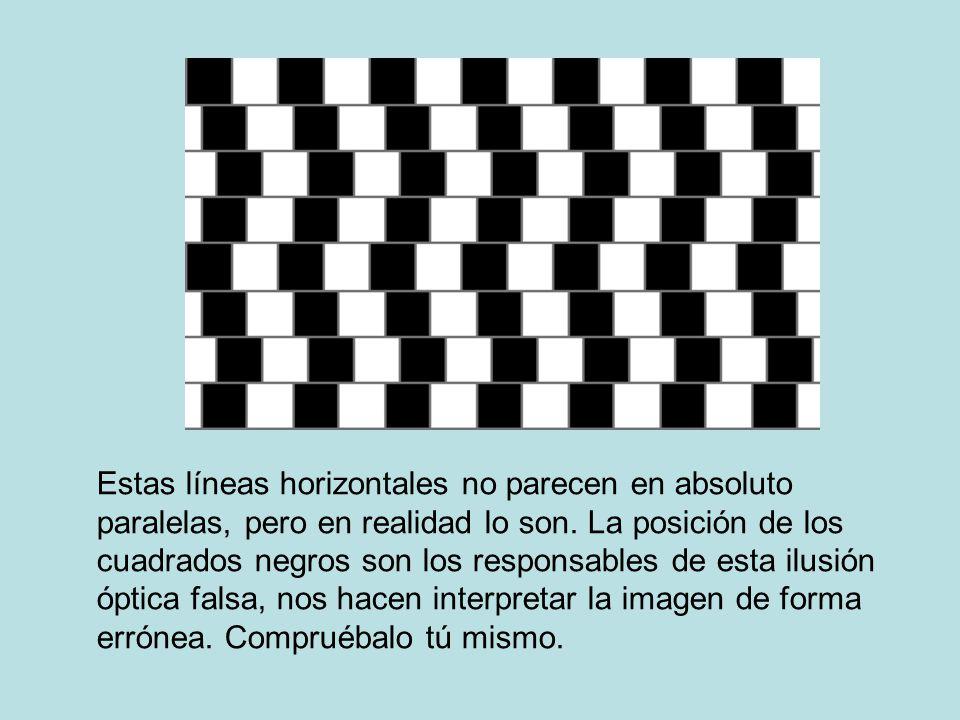 Estas líneas horizontales no parecen en absoluto paralelas, pero en realidad lo son. La posición de los cuadrados negros son los responsables de esta