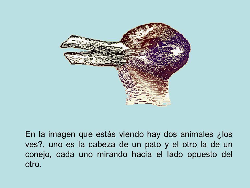 En la imagen que estás viendo hay dos animales ¿los ves?, uno es la cabeza de un pato y el otro la de un conejo, cada uno mirando hacia el lado opuest