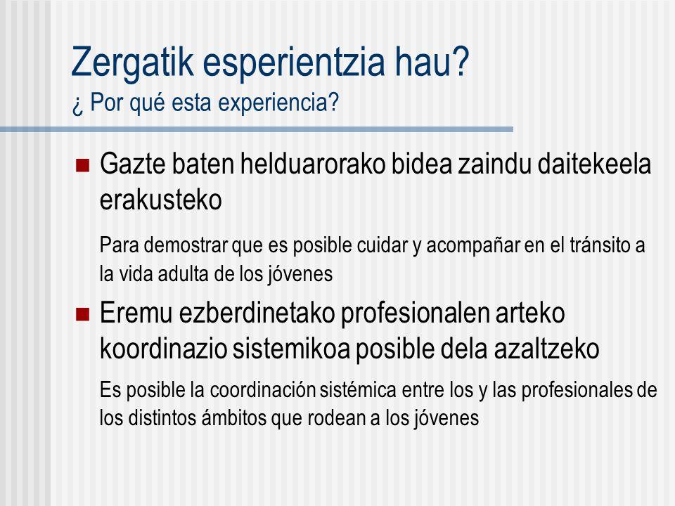Zergatik esperientzia hau. ¿ Por qué esta experiencia.