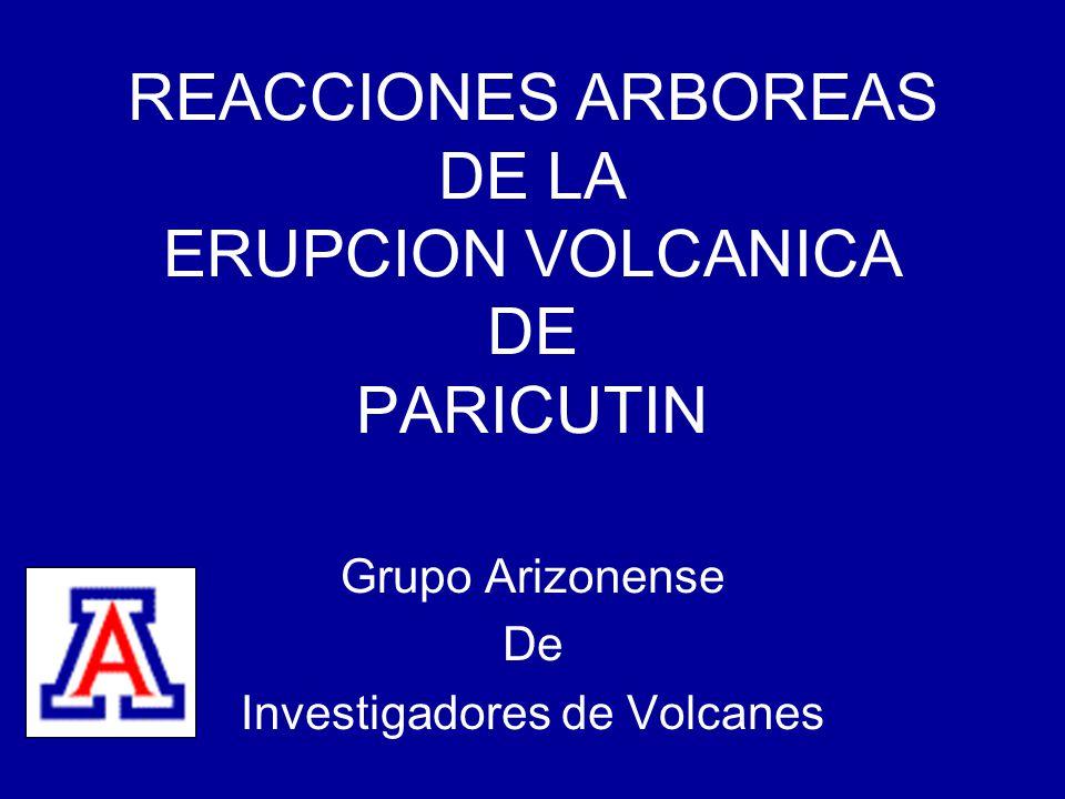 REACCIONES ARBOREAS DE LA ERUPCION VOLCANICA DE PARICUTIN Grupo Arizonense De Investigadores de Volcanes