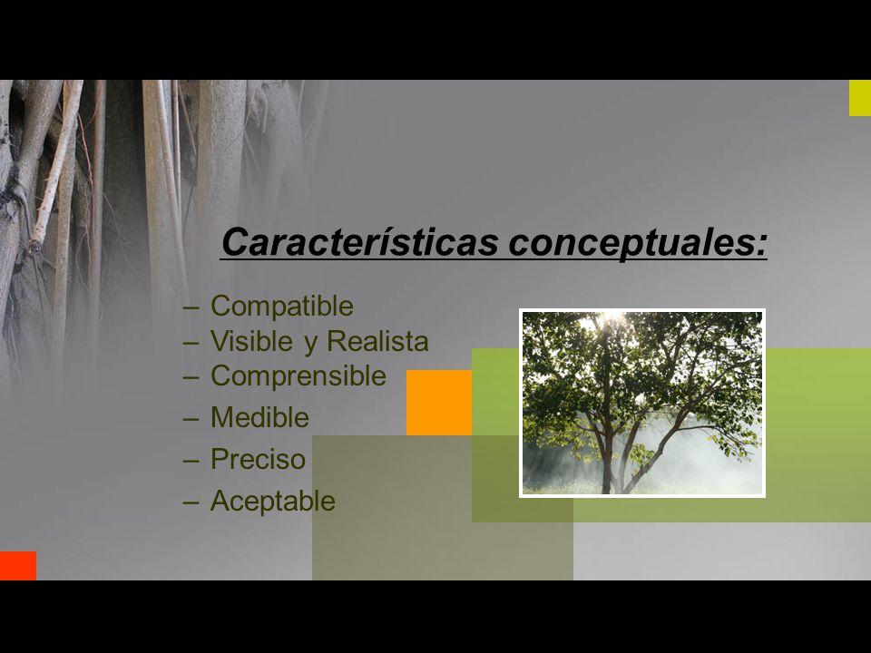 –Compatible –Visible y Realista –Comprensible –Medible –Preciso –Aceptable Características conceptuales: