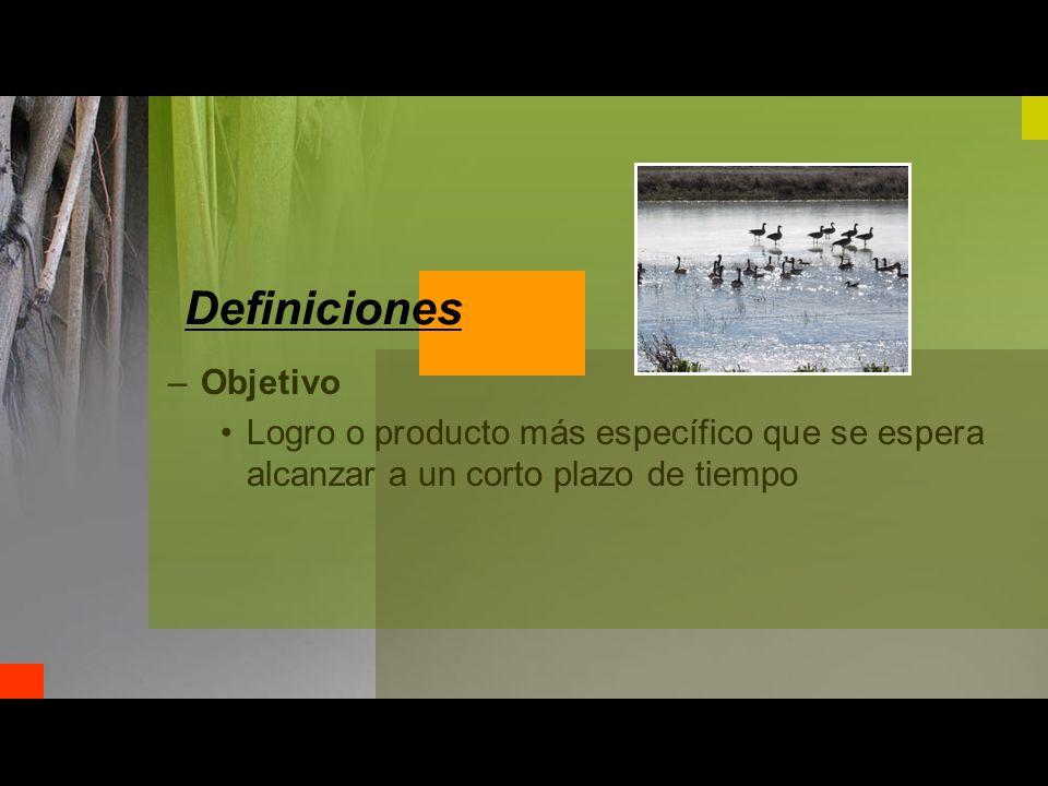 –Objetivo Logro o producto más específico que se espera alcanzar a un corto plazo de tiempo Definiciones