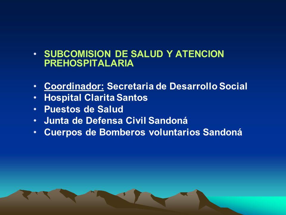 SUBCOMISION DE SALUD Y ATENCION PREHOSPITALARIA Coordinador: Secretaria de Desarrollo Social Hospital Clarita Santos Puestos de Salud Junta de Defensa Civil Sandoná Cuerpos de Bomberos voluntarios Sandoná