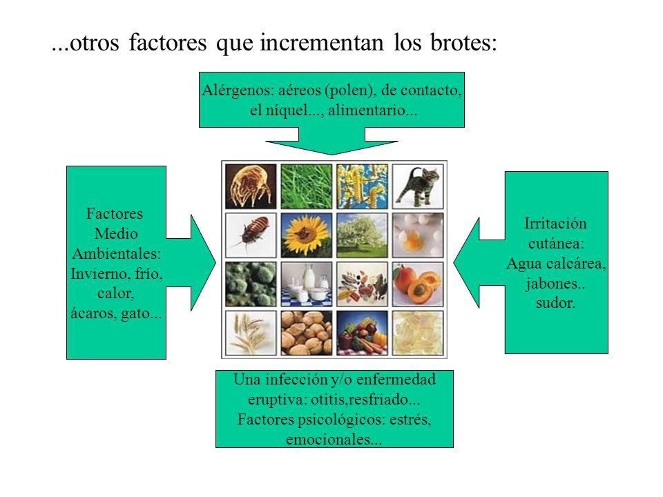 Alérgenos: aéreos (polen), de contacto, el níquel..., alimentario...