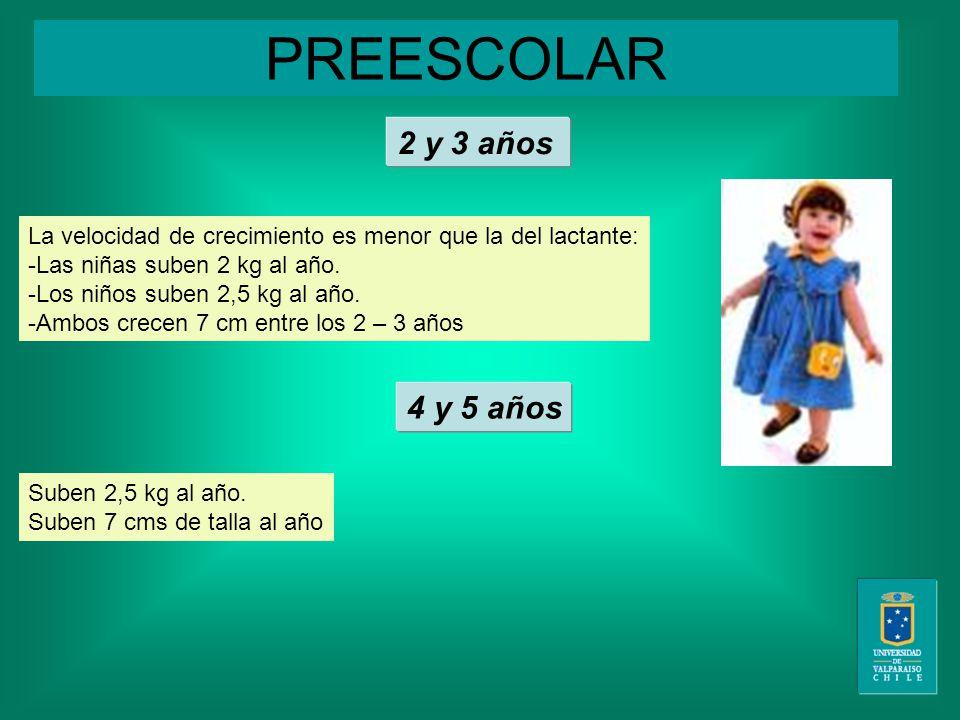 PREESCOLAR La velocidad de crecimiento es menor que la del lactante: -Las niñas suben 2 kg al año.