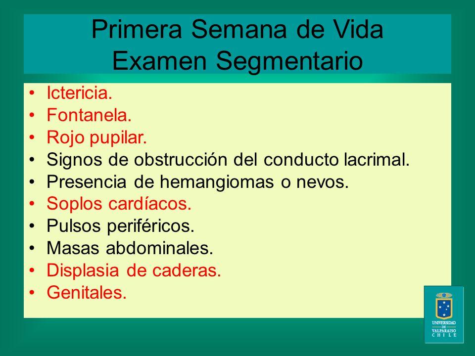 Primera Semana de Vida Examen Segmentario Ictericia.